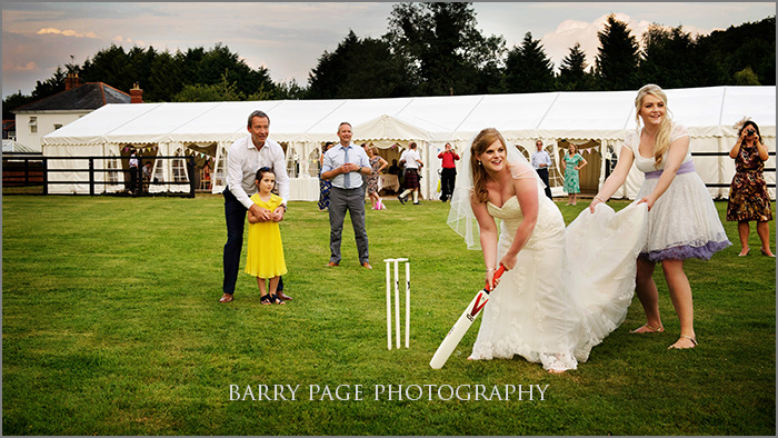 Wedding Cricket by Barry Page