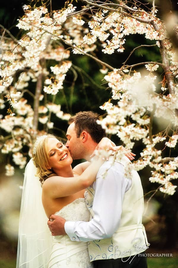 bride and groom kiss under spring blossom